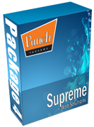 Punch pub website package 4